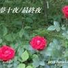 夏目漱石/夢十夜⑨⑩お盆前特集
