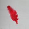赤い羽根共同募金 久しぶりに街頭で募金しました