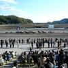 東京芝1600m(2歳戦)種牡馬別ランキング