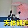 ピンクムーンストーンアクセサリー3選と4月の満月はピンクムーン