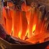 山梨から新鮮な健味どり!美味しい焼鳥の炭火屋 串RYU