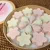 干菓子ならこれ!吉野の葛菓子『吉野懐古』松屋本店。吉野葛の味わいと和三盆香る奈良の逸品!