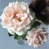 ミニ薔薇のドライフラワー