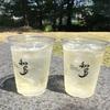 【子連れおすすめ】鯉のぼり→知多ハイボール@東京ミッドタウン