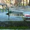 醒井養鱒場の池(滋賀県米原)