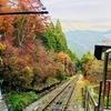 【アウトドア】美しい紅葉も楽しめる! 奥多摩・御岳山 [東京 日帰り ハイキング・トレッキング]