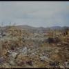 1945年5月22日 『死ぬまで戦う運命』