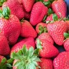 European Strawberry season has been started!