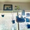 キッチンDIY・端材で飾り棚を作る