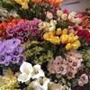 【水曜恒例】《 本店1階 》春のお花おすすめアイテムをご紹介!
