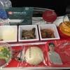 JAL 日本航空 JL741 成田-マニラ フライト日記 機材、食事を紹介