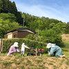【奈良】室生の砥取(ととり)という里に今にも動き出しそうな案山子がおりました!