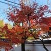 暦は12月、中身は秋