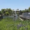 京都ぶらり 魅力の岡崎蹴上 岡崎疎水記念館