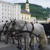 ザルツブルク大聖堂と、街中の見所をざっくり紹介