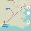 エクアドル編 Galapagos Isla Santa Cruz編(4)Playa Tortugaへの散歩道。