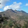 茅が岳の花々1 2006.5.5