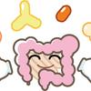 免疫力を高める、乳酸菌生産物質