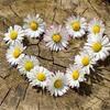 パートナーとの関係で大切なもの。癒し・癒される存在になろう!