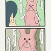 スキウサギ「鼻」