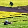 「農業」に投資しよう