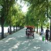 中国東北(瀋陽3)