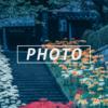 西方寺の秋 -彼岸花-:Sony α7c + SEL14F18GM