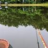 富沢の池19