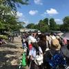 上野動物園シャンシャン探訪。-もうすぐ1歳の頃-