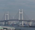 港の見える丘公園に出没!横浜ベイブリッジの大展望!夜景がお勧めです!!