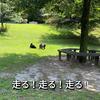 2021.6.21 【野性味溢れるモフモフ達】 Uno1ワンチャンネル宇野樹より