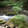 奥入瀬渓流,旅行最後の写真