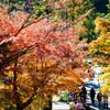 北鎌倉で紅葉を満喫する。by円覚寺