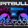 【歌詞和訳】I Feel Good:アイ・フィール・グッド - Pitbull ft. DJ WS & Anthony Watts:ピットブル