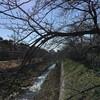 3/6~3/12 今週のまとめ (2017-W10)