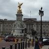 【イギリス旅行】バッキンガム宮殿の内部見学した!