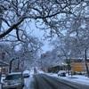 雪が降る [Trip2019・Day4]