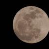 クールピクスP510手持ちで2012/04/06 月齢14.5のお月様を撮る