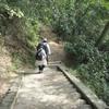 勝俣部長の「高尾登山と健康体質作り」748・・・・ウソつき プロ
