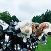 ゴルフコンペで優勝!!!