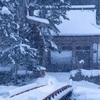 京都・花脊 - 牡丹雪舞う花脊・峰定寺