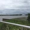 荒川河口まで