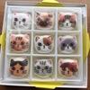 フェリシモ猫部のニャシュマロをいただきました。かわいい…