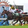 【函館2歳ステークス 2017 予想とデータ分析】持ち時計から判断すると勝ち馬候補は4頭まで絞れるんですが…。