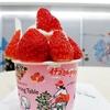 【グッドモーニングテーブル】 たっぷり過ぎて溢れそうな十勝ジャージーミルクのイチゴミルクソフト @横浜高島屋