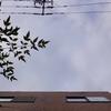 作曲工房 朝の天気 2018-10-23(火)晴れ(ただし雲量8)