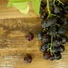 小学生が読む「有島武郎」 〜『一房の葡萄』を英語で読む