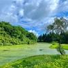 鏡池(新潟県小千谷)