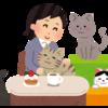 猫の行うアニマルセラピー!癒しの力に秘められた3つの効果とは?