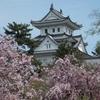 空から日本を見てみよう ― 大垣市~関ケ原 ―